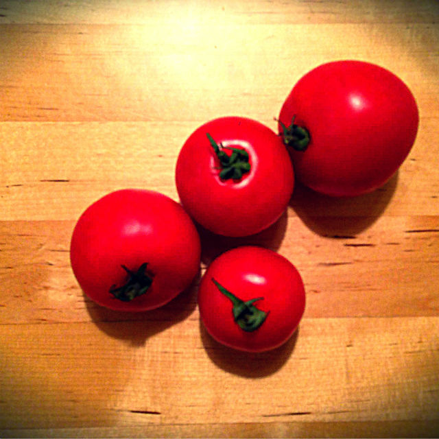 Tomatoes from Lila 640x640