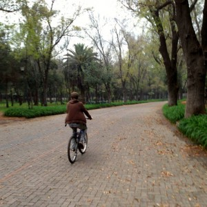 Bike riding Mexico City Chapultepec Park