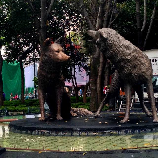 Coyote sculpture in Coyoacan