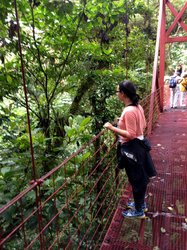 Tamara Bridge Monteverde